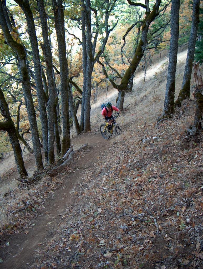 Trail Pics-milswitchback.jpg