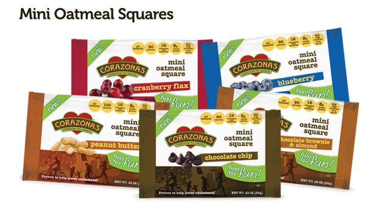 Mini Oatmeal Squares