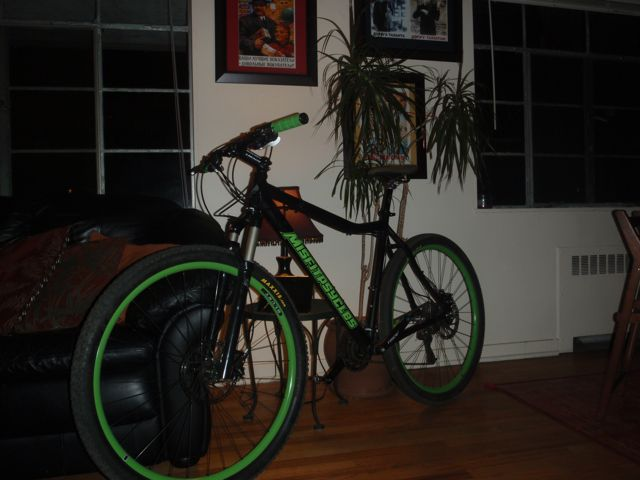 Can We Start a New Post Pictures of your 29er Thread?-missfit-8.jpg