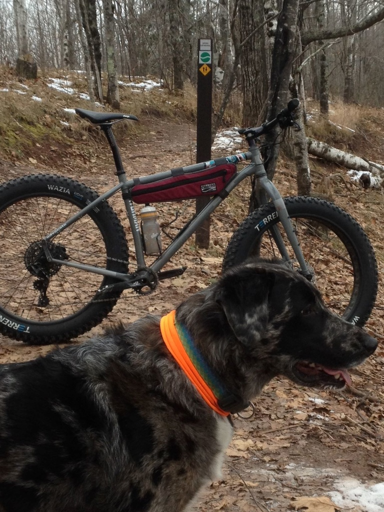 Mountain Biking with Dogs-mission.jpg