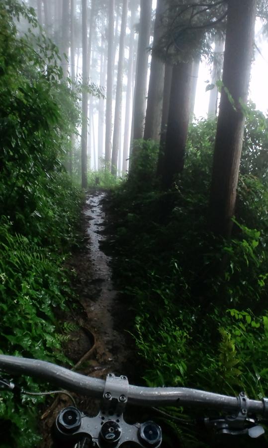 Nikko Mountain Biking-mitake-itsukaichi-1.jpg