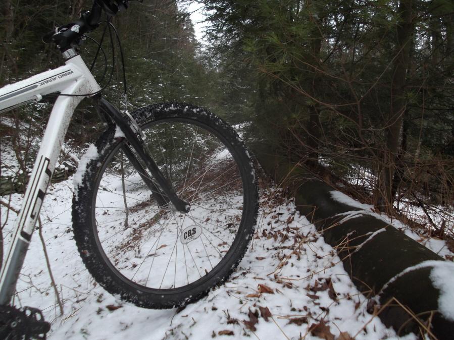 Ride da mOOn 2/11/12 Saturday-mlp-sat-long-ride-2-11-12-009_900x900.jpg