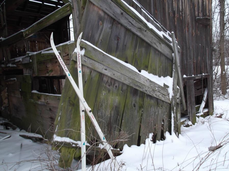 Anyone else enjoy the snow today?-mlp-xc-ski-1-21-12-012_900x900.jpg