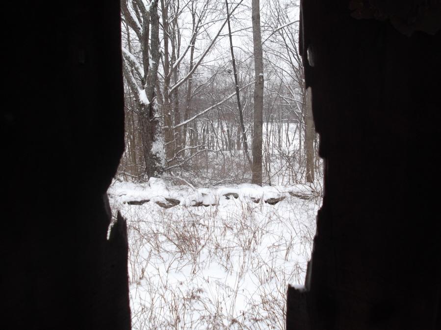 Anyone else enjoy the snow today?-mlp-xc-ski-1-21-12-018_900x900.jpg