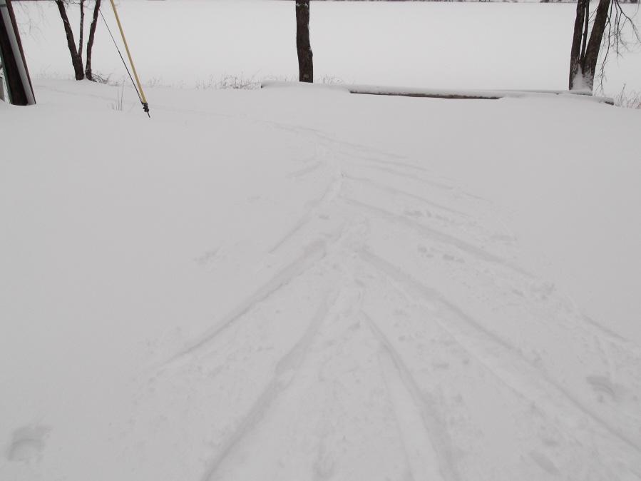 Anyone else enjoy the snow today?-mlp-xc-ski-1-21-12-031_900x900.jpg