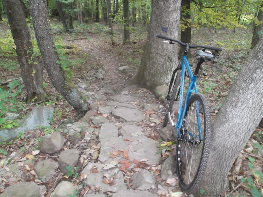 Action pics of Rigids on technical terrain-mlpsatworkride-9-22-12-002_900x900.jpg