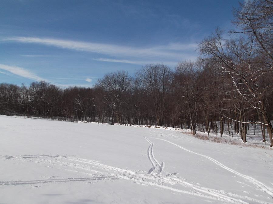 """Who's """"NOT"""" riding tomorrow?-mlpsun-ride-xc-ski-1-22-12-012_900x900.jpg"""