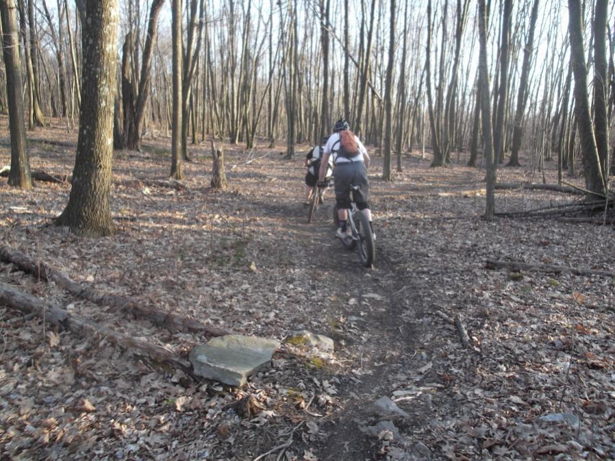 Rid'in da Trails...-mlpwnr-3-14-12-008_900x900.jpg