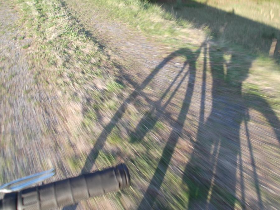 Ride da mOOn 4/25/12-mlpwnr-4-25-12-rice-013_900x900.jpg