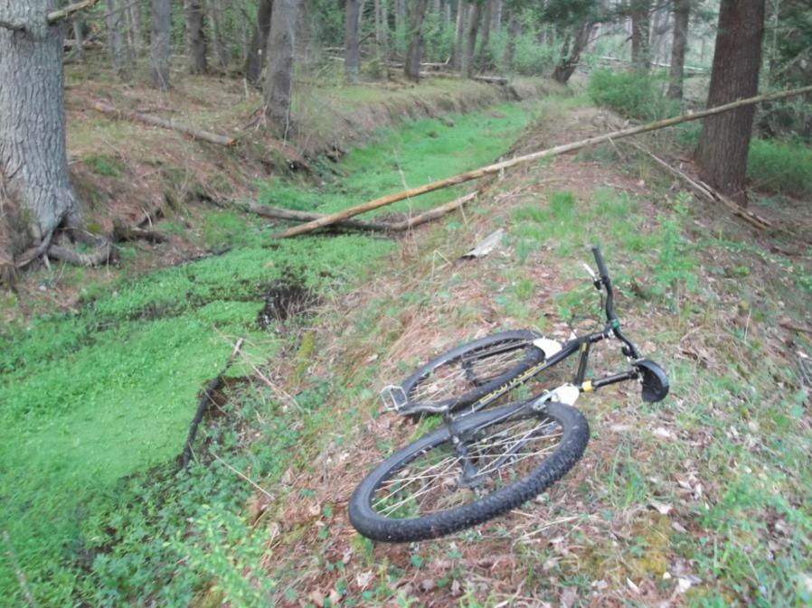Ride da mOOn 4/25/12-mlpwnr-4-25-12-rice-023_900x900.jpg