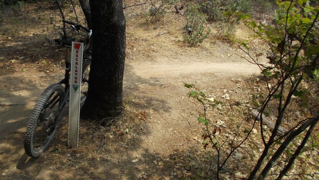 Bike + trail marker pics-mm3.jpg