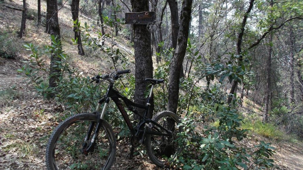 Bike + trail marker pics-mm4.jpg