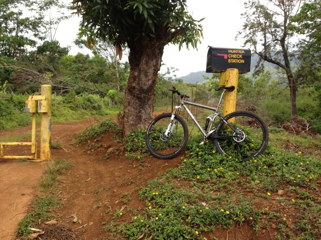 Traveling to Kauai June 17-22. Where to ride, rent/demo a 29er???-moalepe-ridge.jpg