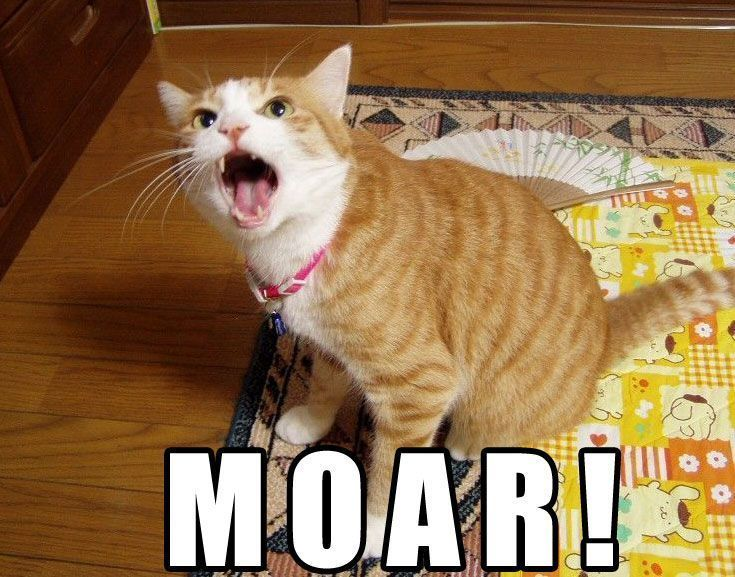 We need moar smilies. moar much moar.-moar-cat.jpg