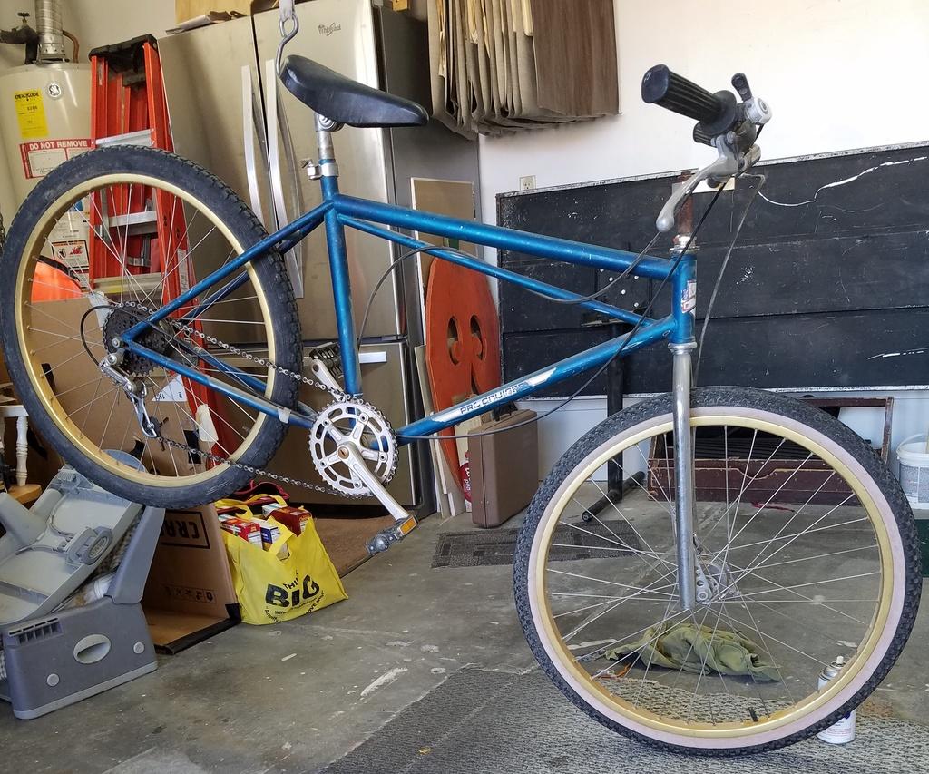 Lawwill Pro Cruiser serial numbers needed-moms-mtn-bike.jpg