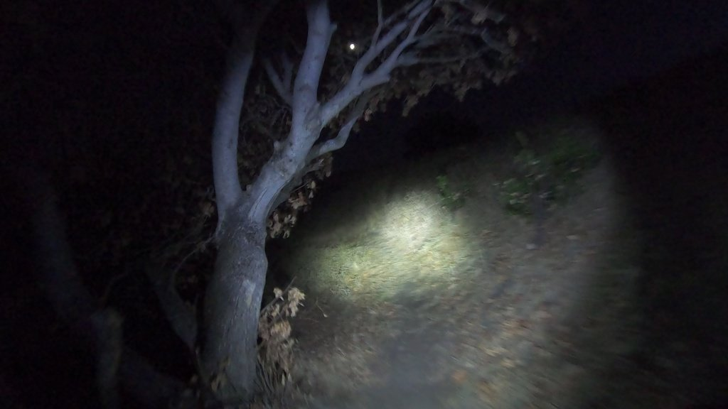 mtb trail ride at night - will a bright light alone scare off critters?-moon.jpg