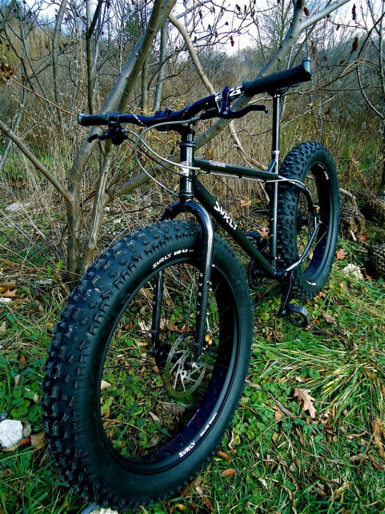 new moony, new to fat bikes....-moony-3.jpg