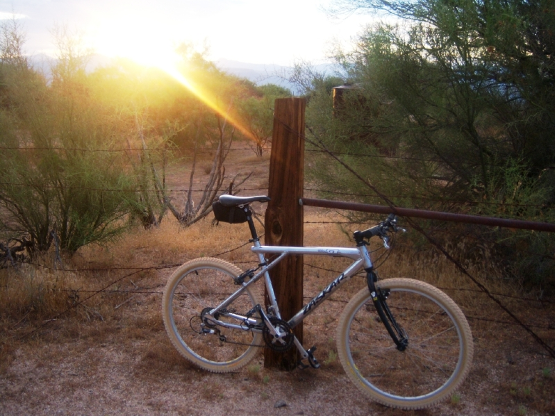 Hello, Im Othervoicez, Im interested in 90 mtb's-morning-ride.jpg