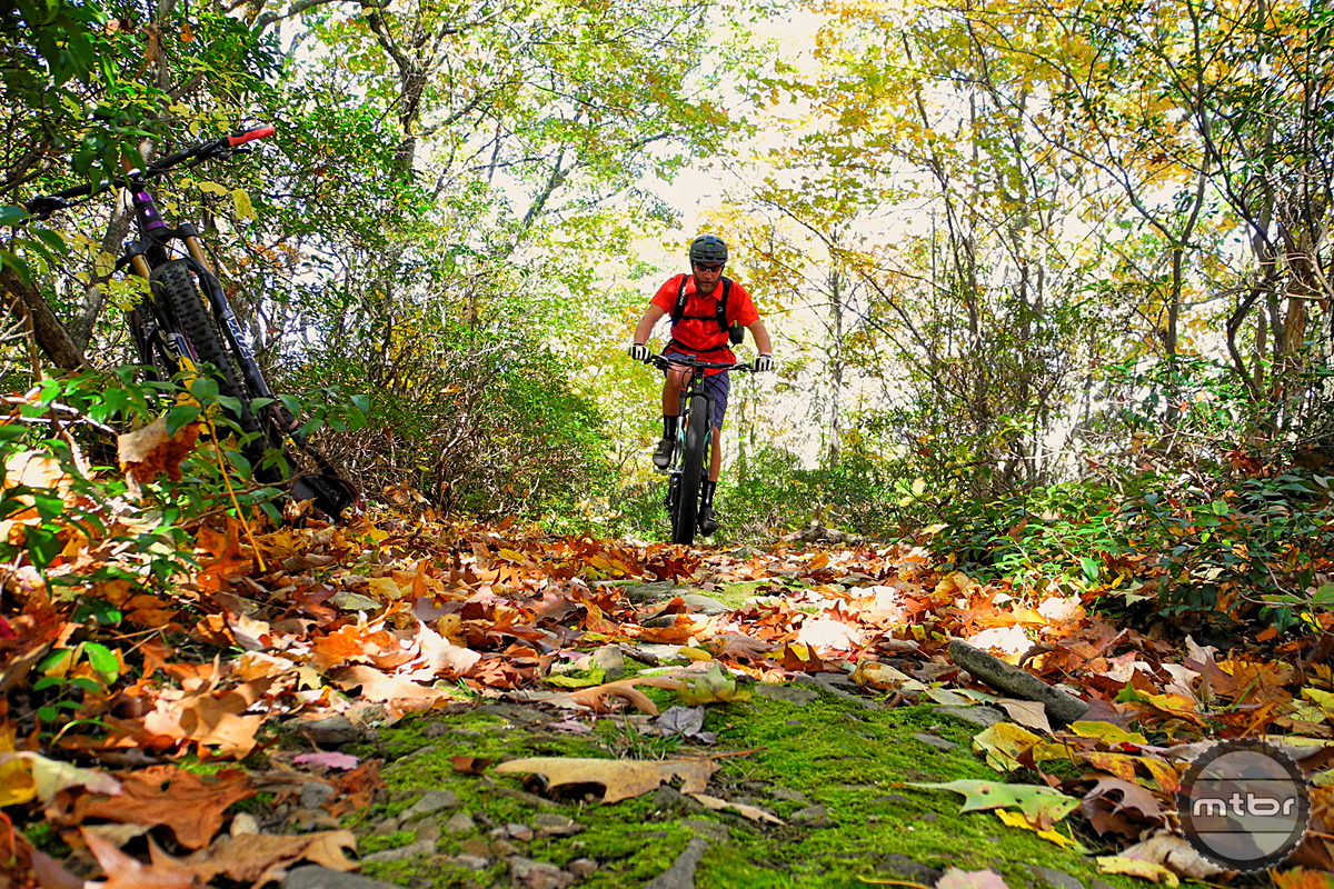 Fall foliage contrasted by bright green moss makes the fall a beautiful time to visit the area, but the moderate climate makes most of the year prime riding season.