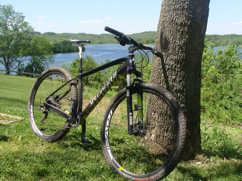 Lightweight fork upgrade need suggestions!-mothers-day-001.jpg