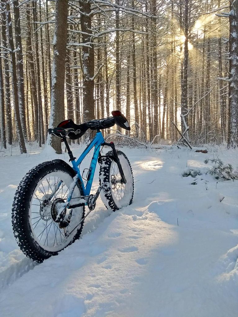 Daily fatbike pic thread-moto-g5-20180218_085310259-1024.jpg