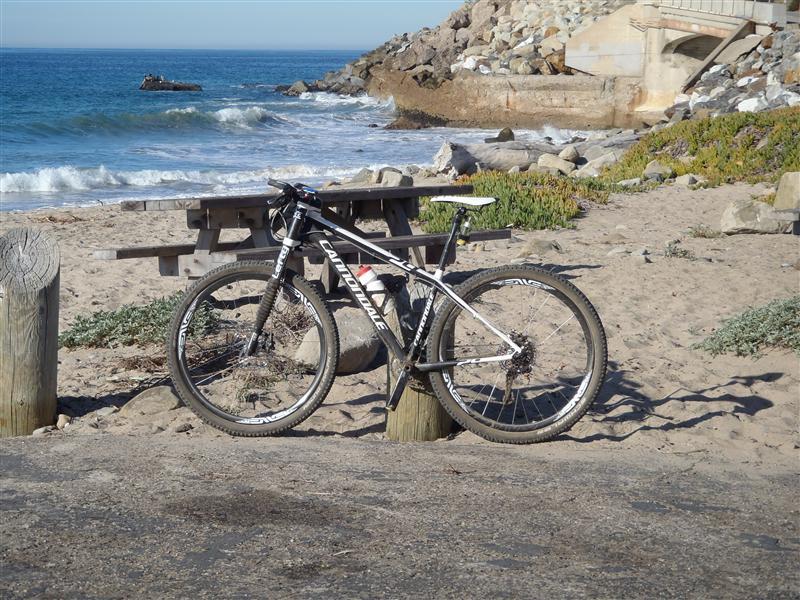 Flash 29er carbon ride quality?-mountain-bike-ride-coast-010-medium-.jpg