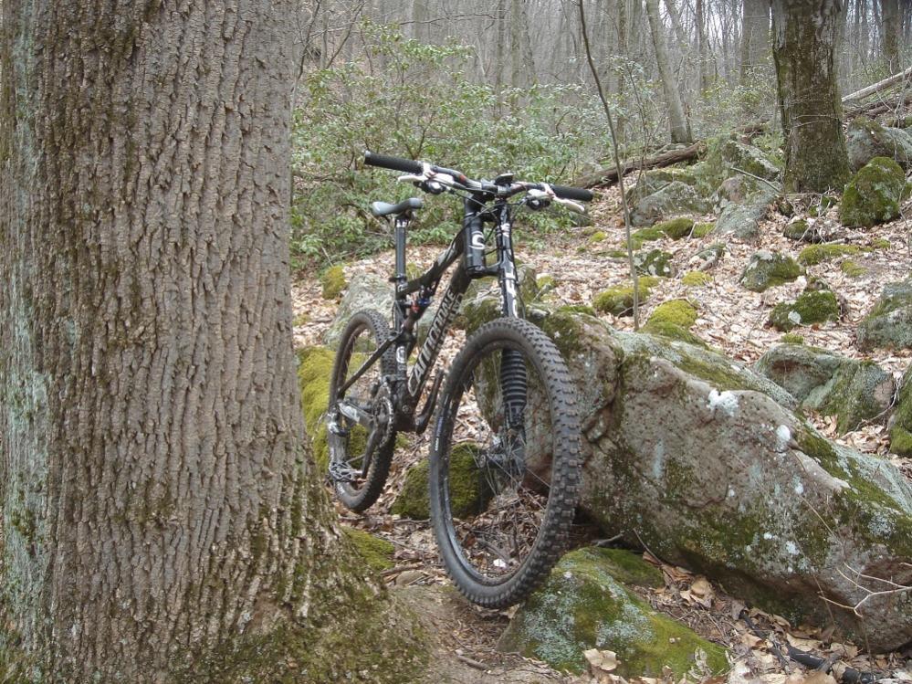 We need a photo friday!-mountain-biking-012.jpg