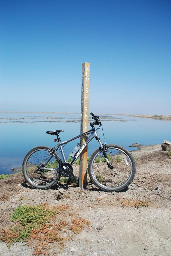 Flips on Bikes...  Post your riding pics here...-mountain-biking-36-120-.jpg
