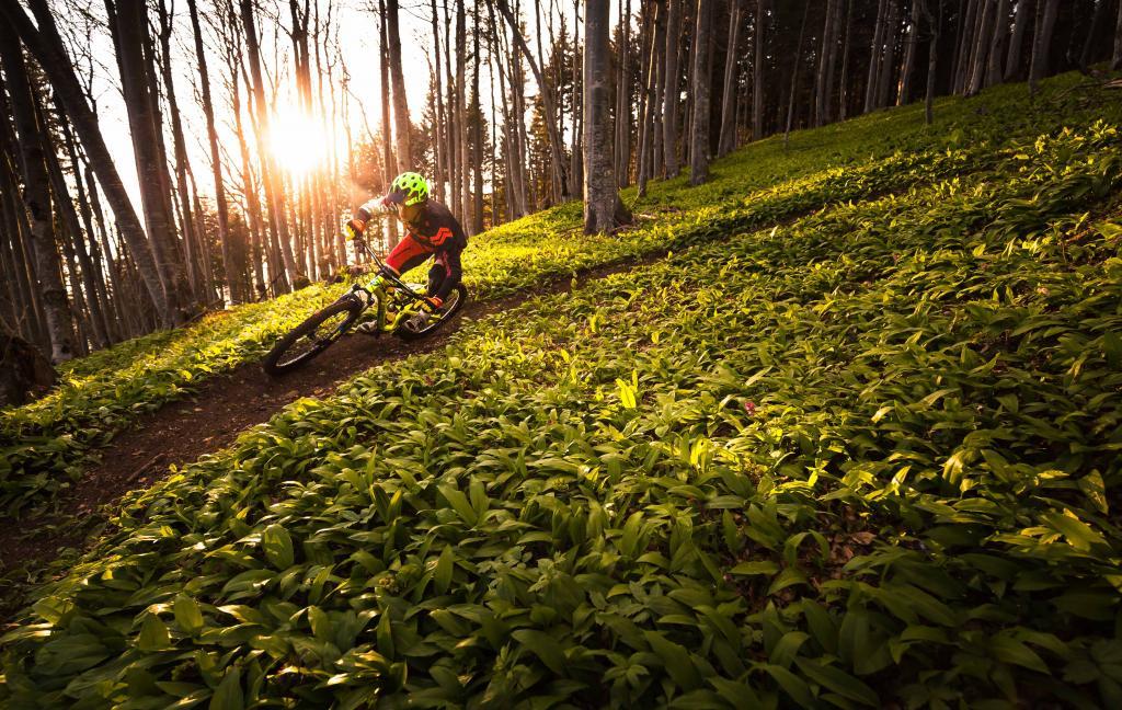 Trip to Slovenia-mountain-biking-bike-park-holiday-vacation-slovenia-europe-15.jpg