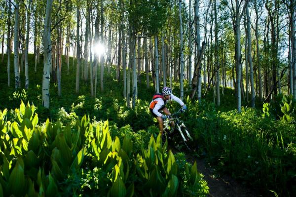 Mountain biking trails galore by Xavier Fane