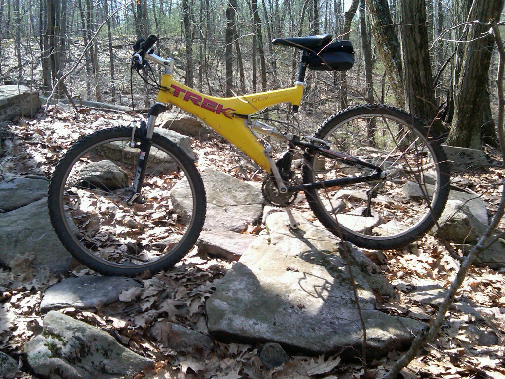 Your Entry Level MTB (Pics and Upgrades)-mountainbiking.jpg