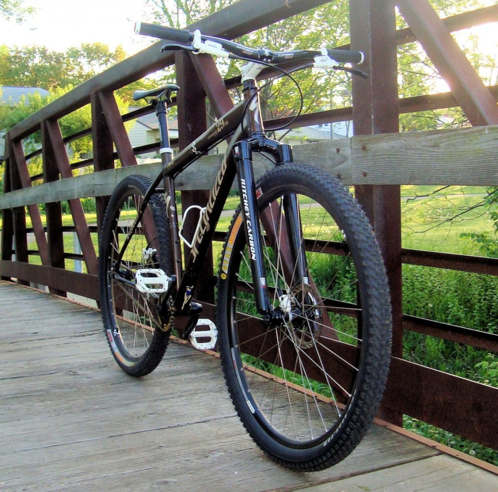 29er carbon fork .... I'm in the mood for one. :)-mrt2.jpg
