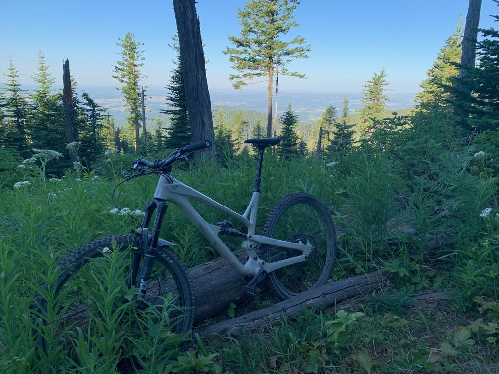 did you ride today?-mt-spokane-mtb.jpg