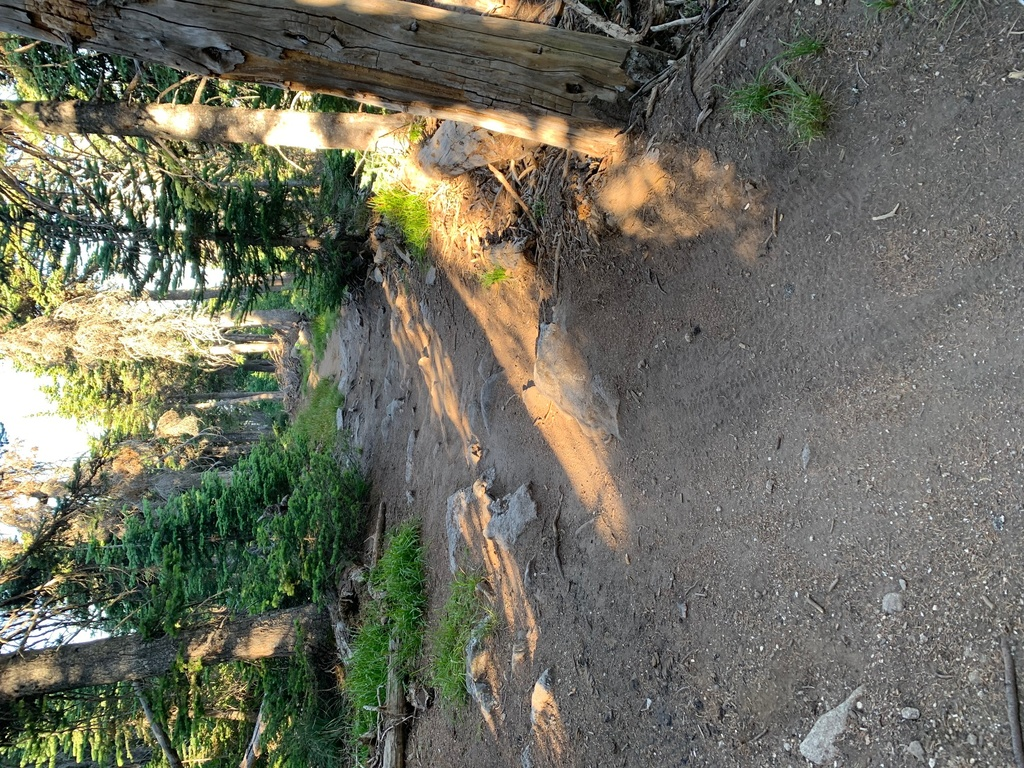 did you ride today?-mt-spokane-trail-140.jpg