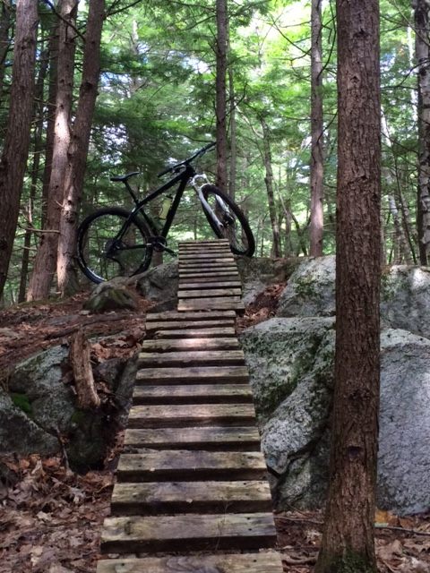 Riding in New England picture thread-mtb-bridges.jpg