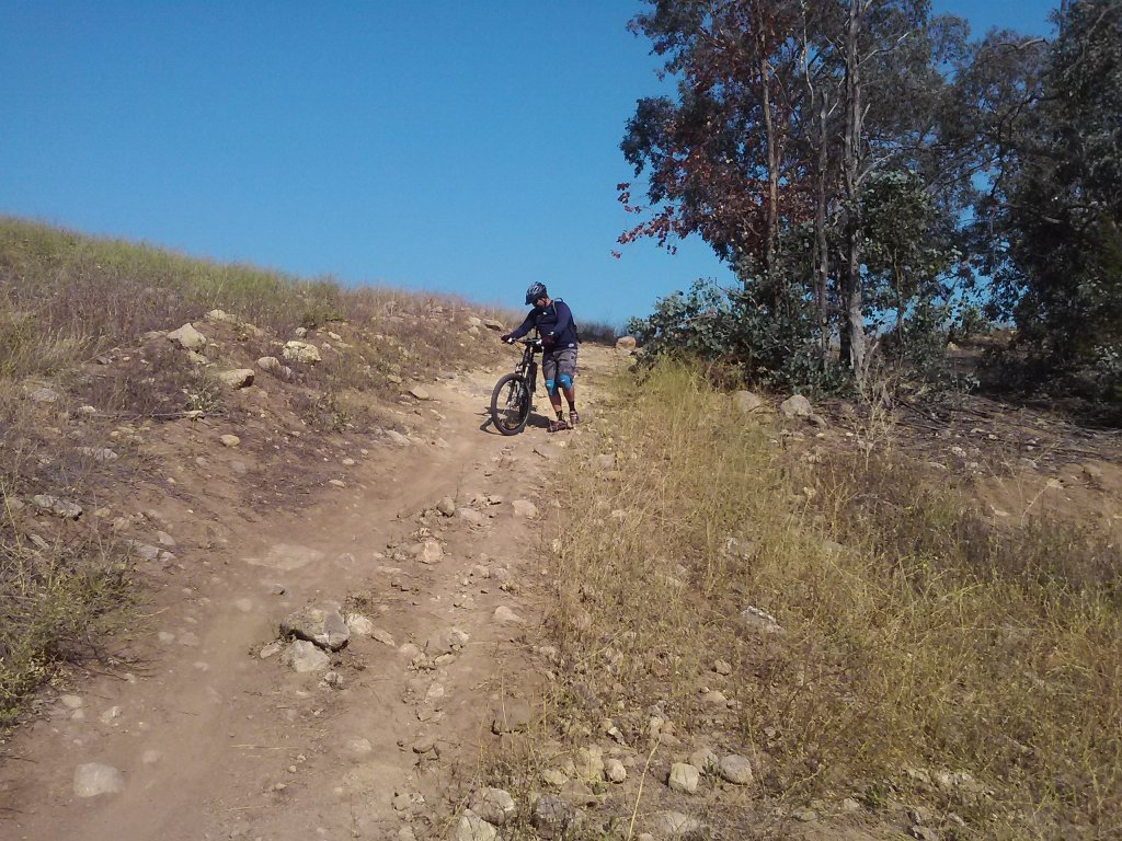 What did You do today on your mountain bike?-mtb1.jpg