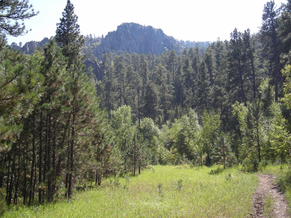 Current Black Hills Trail conditions (March 13-20)...-mtbr-2.jpg