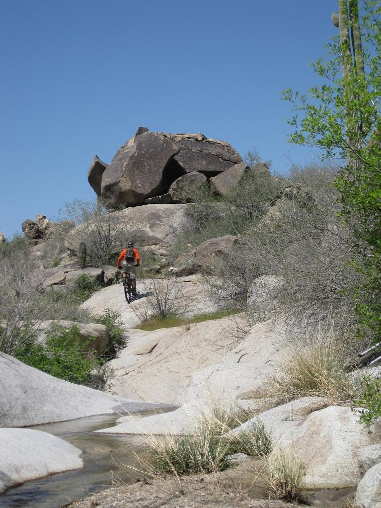 Nate Goes Site Seeing, Doggy Style 1.-mtbr-hiking.jpg
