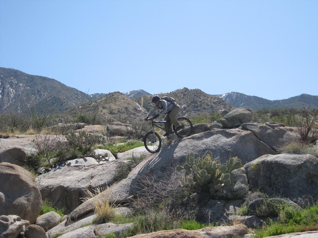 Nate Goes Site Seeing, Doggy Style 1.-mtbr-panning.jpg