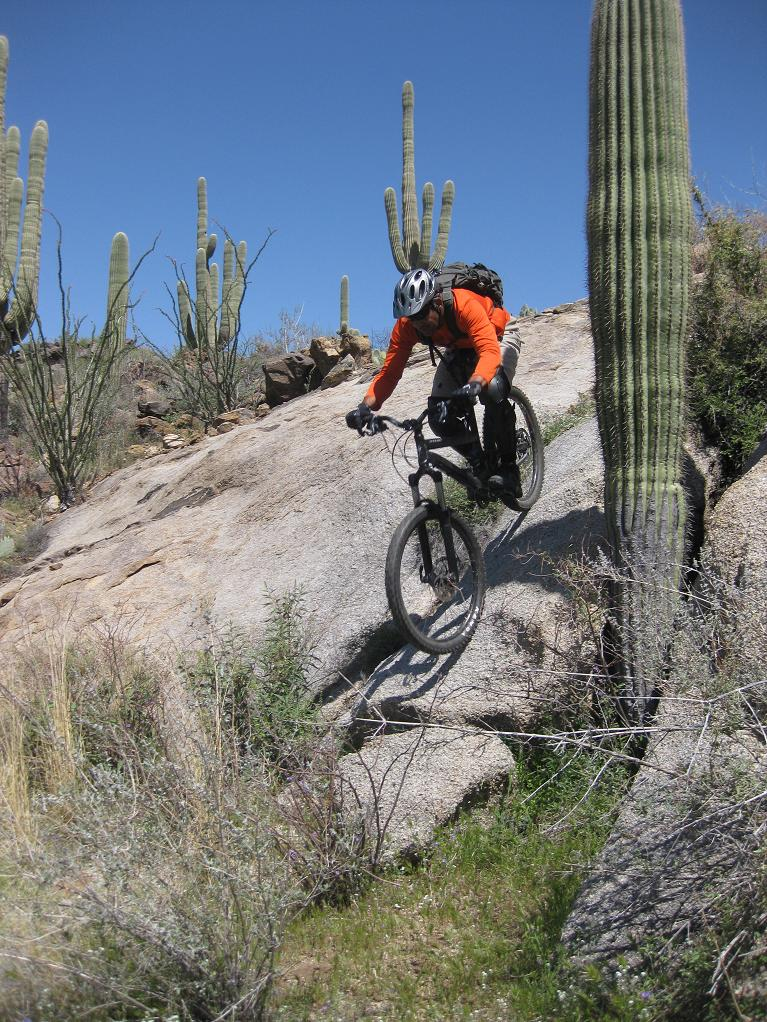 Nate Goes Site Seeing, Doggy Style 1.-mtbr-saguaro-rolling.jpg