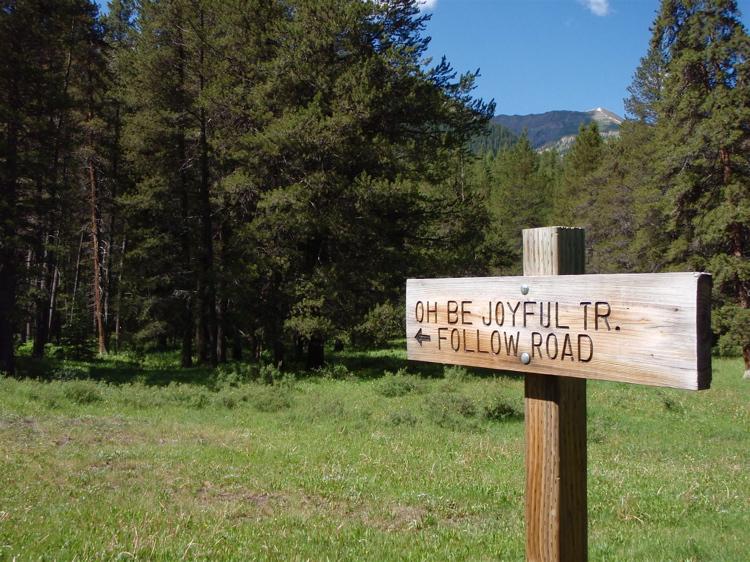 Crested Butte in the Summertime-mtbr15.jpg