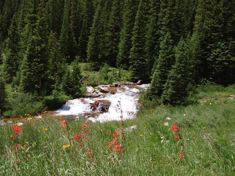 Crested Butte in the Summertime-mtbr19.jpg