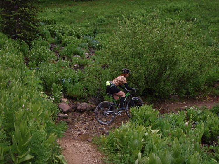 Crested Butte in the Summertime-mtbr24.jpg