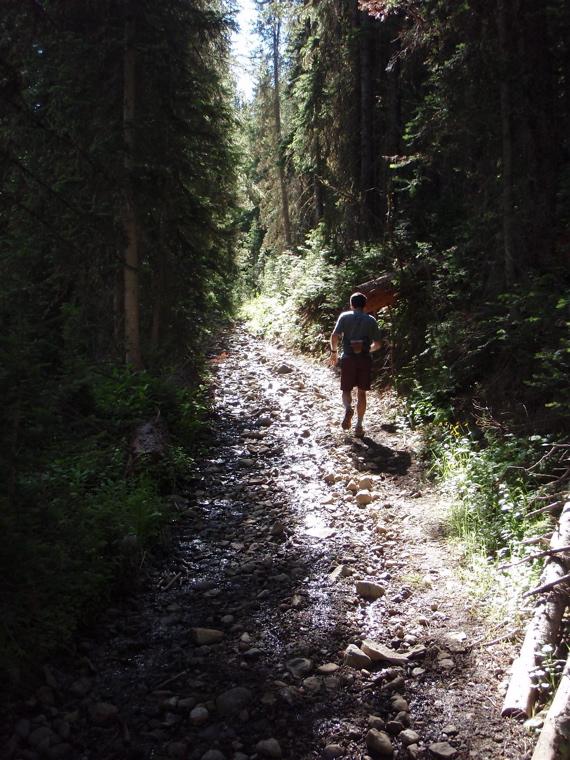 Crested Butte in the Summertime-mtbr28.jpg