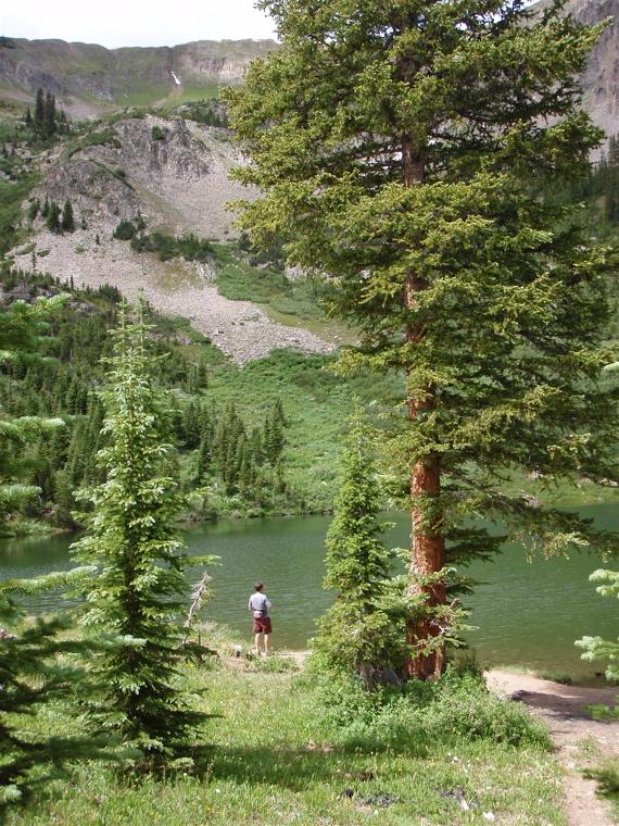 Crested Butte in the Summertime-mtbr30.jpg