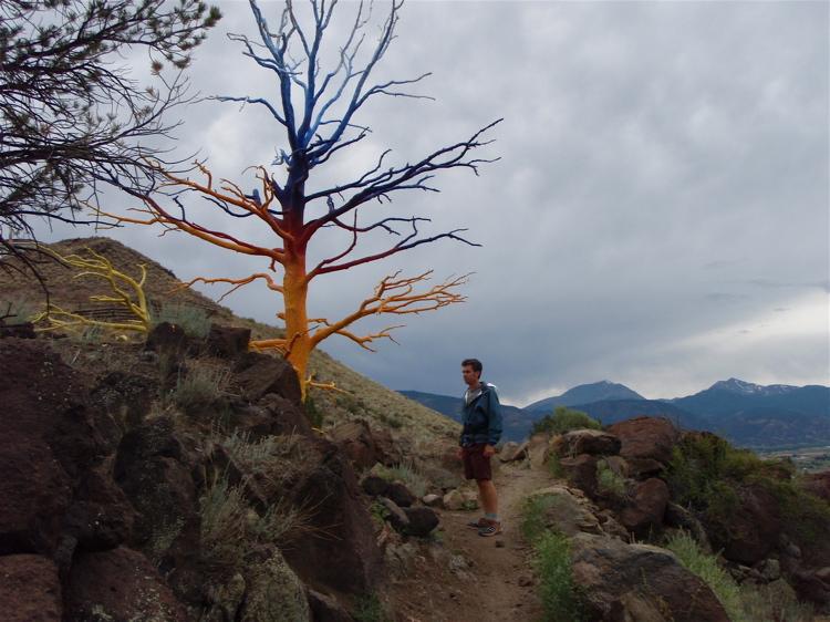 Crested Butte in the Summertime-mtbr4.jpg