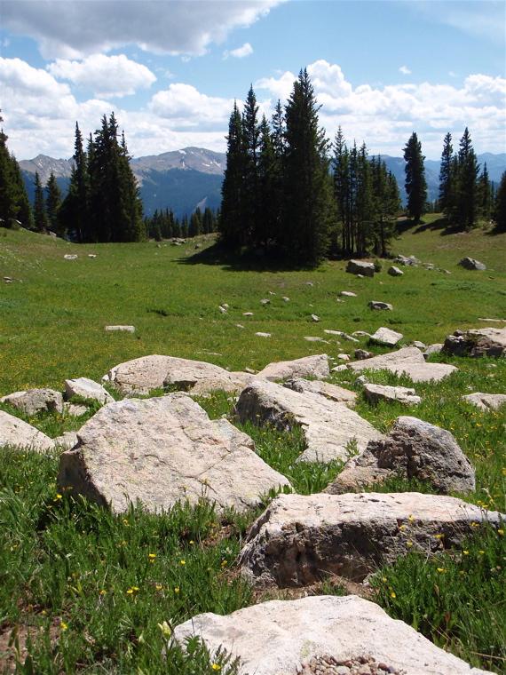 Crested Butte in the Summertime-mtbr42.jpg