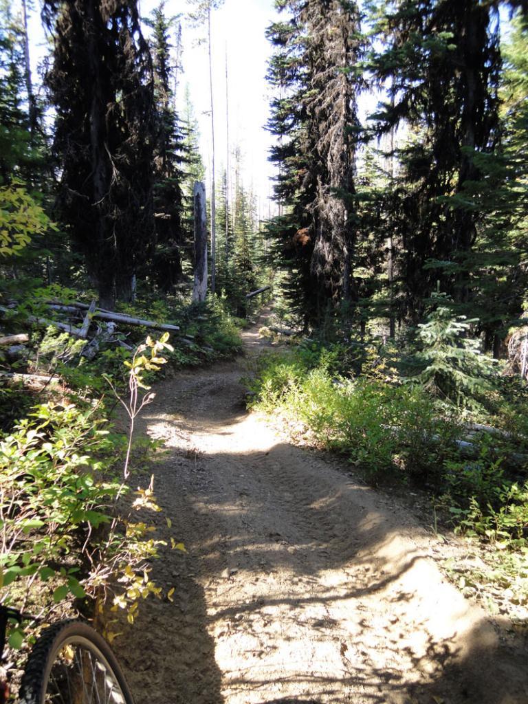 Ride Report: Wallowas, Blue Mtns., and SE Oregon-mtfanny2.jpg
