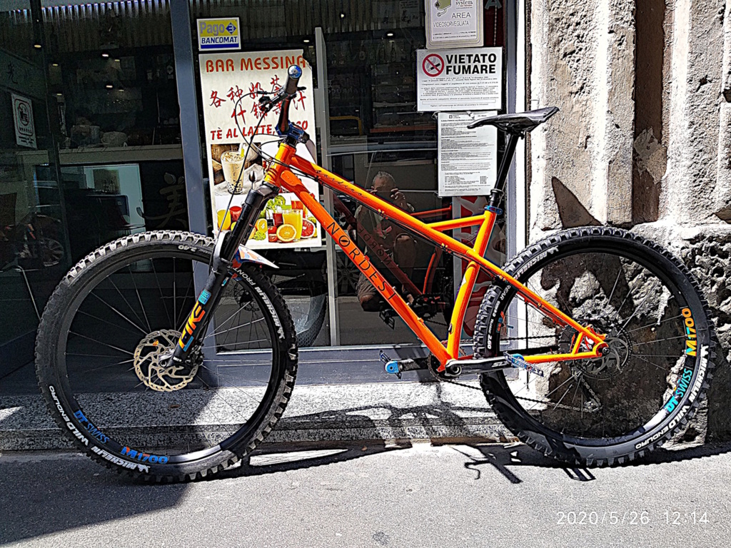 The All Mountain Hardtail Thread. Post up yours.-mullet1-.jpg