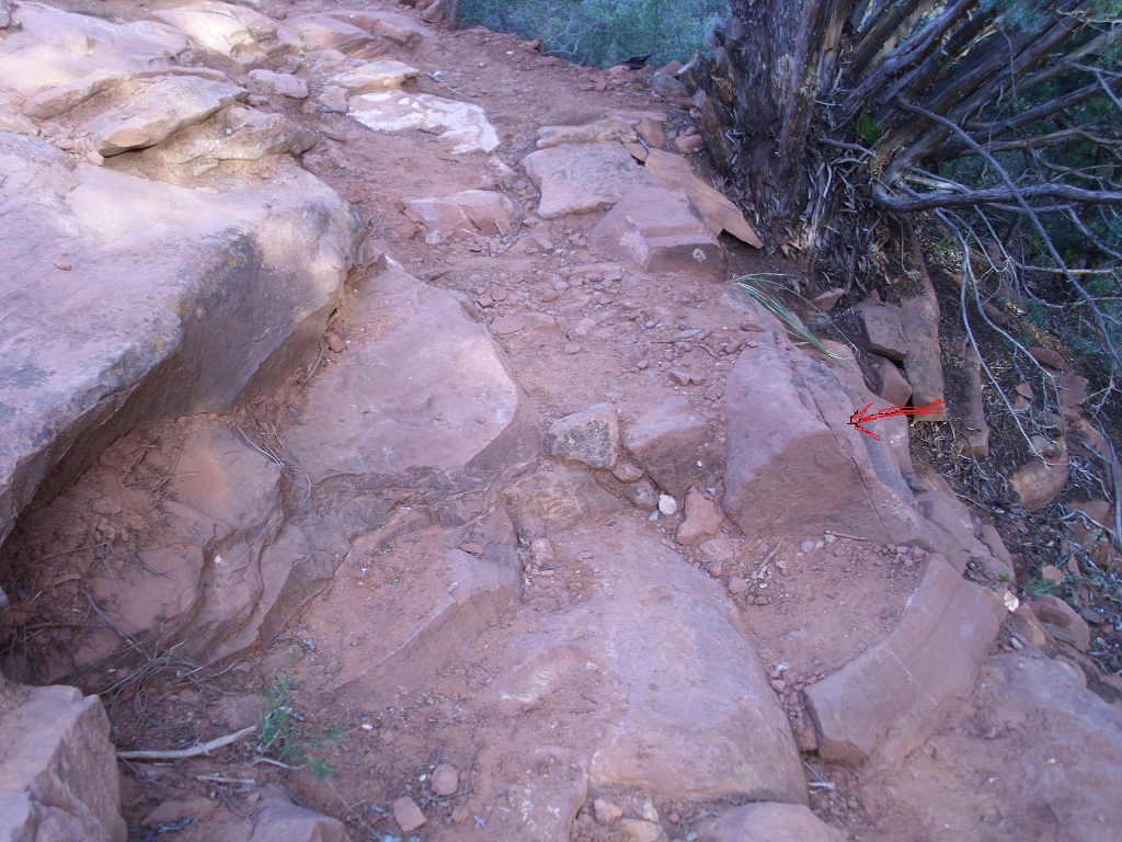 Looking for Trail Improvement Opportunities-munds-first-step-b.jpg